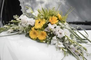 flowers-447256_1280