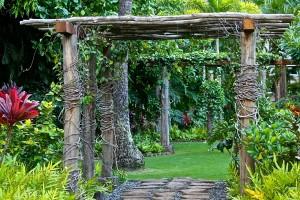 garden-550991_1280