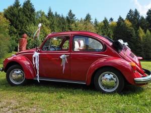 beetle-693637_640