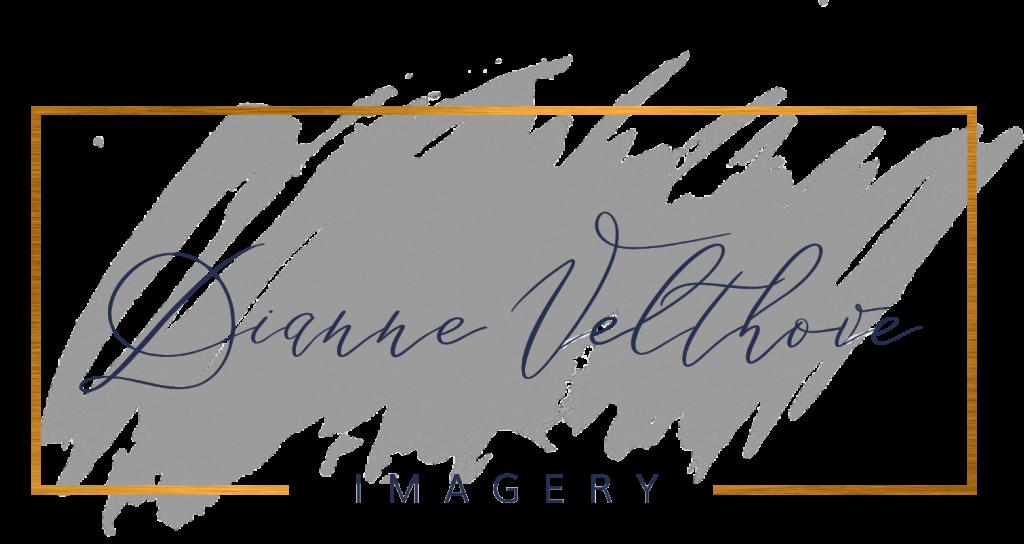 Dianne-Velthove-Imagery-Logo